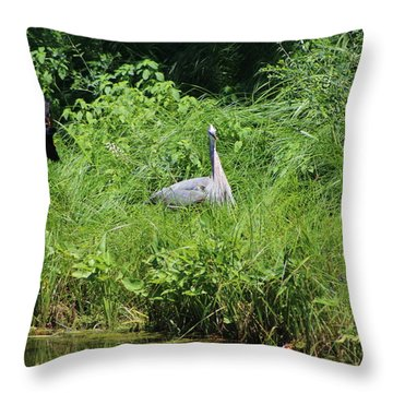 Annoyed - Heron And Red Winged Blackbird 1 Of 10 Throw Pillow