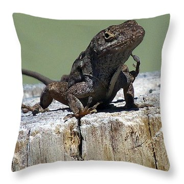 Anole 002 Throw Pillow