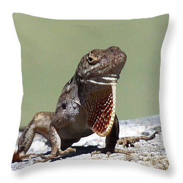 Anole 003 Throw Pillow