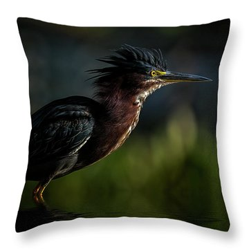 Another Bad Hair Day Throw Pillow