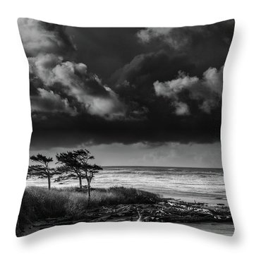 Throw Pillow featuring the photograph Another Day At Kalaloch Beach by Dan Mihai
