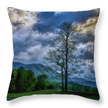 Another Day In Tennessee Throw Pillow