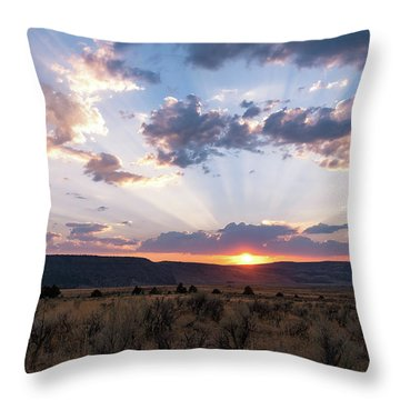 Another Day Throw Pillow