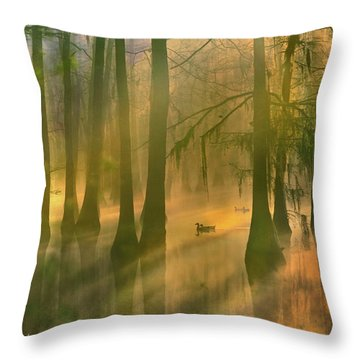 Another Day Throw Pillow by Tim Fitzharris