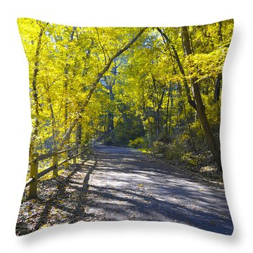 Another Fall In Philadelphia Throw Pillow by Bill Cannon