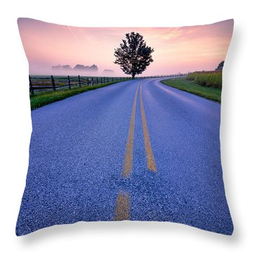Another Gettysburg Morning Throw Pillow by Craig Szymanski