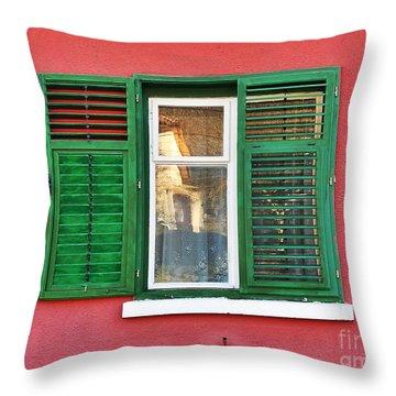 Another Green Shutter Throw Pillow