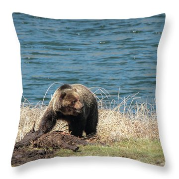 Another Look Throw Pillow