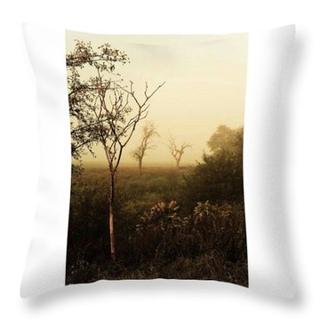 Another Morning  #autumn #morning Throw Pillow