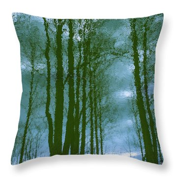Another Place And Time Throw Pillow