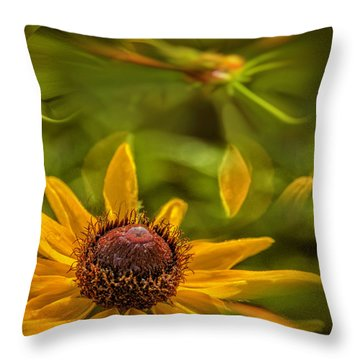 Another Time, Maybe Throw Pillow