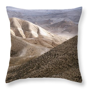 Another View From Masada Throw Pillow by Dubi Roman