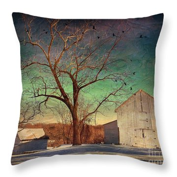 Throw Pillow featuring the photograph Another Winter Day  by Delona Seserman