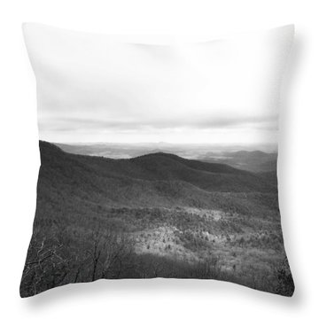 Ansel Throw Pillow