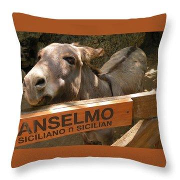 Anselmo Throw Pillow