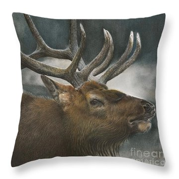 Answering The Challenge Throw Pillow