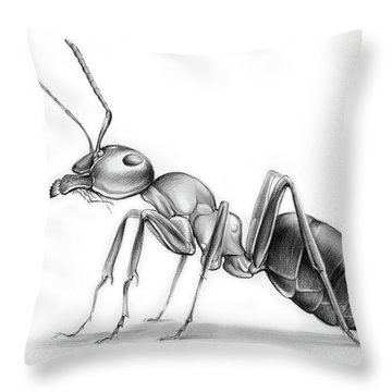 Ant Throw Pillow by Greg Joens