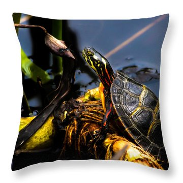 Ant Meets Turtle Throw Pillow