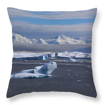 Throw Pillow featuring the photograph Antarctic Peninsula by Andrei Fried