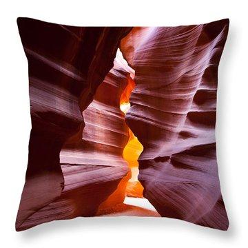 Antelope 6 Throw Pillow