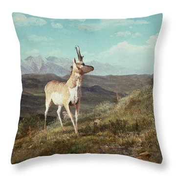 Antelope Throw Pillow by Albert Bierstadt