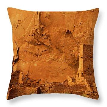 Antelope House Throw Pillow