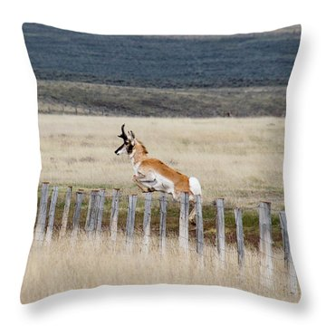 Throw Pillow featuring the photograph Antelope Jumping Fence 1 by Rebecca Margraf