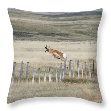 Throw Pillow featuring the photograph Antelope Jumping Fence 2 by Rebecca Margraf