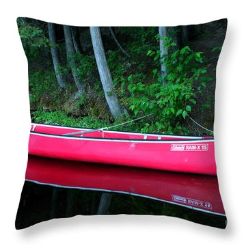 Anticipation Throw Pillow by Idaho Scenic Images Linda Lantzy
