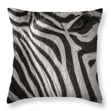 Anticipation  Throw Pillow by Sherry Davis
