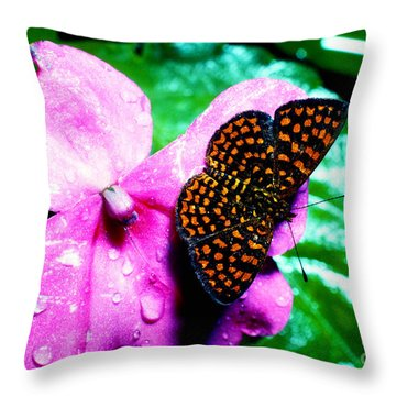 Antillean Crescent Butterfly On Impatiens Throw Pillow by Thomas R Fletcher