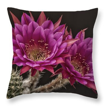 Antimatter Throw Pillow