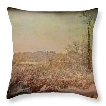 Throw Pillow featuring the photograph Antique Amber Winters Glory by Aimee L Maher Photography and Art Visit ALMGallerydotcom