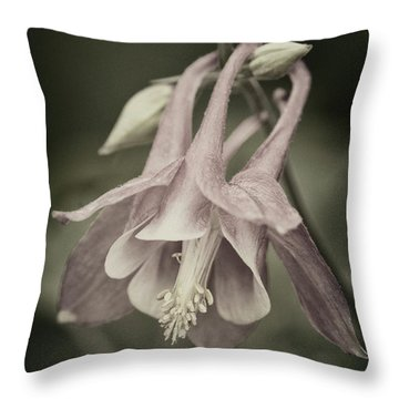 Throw Pillow featuring the photograph Antique Columbine - D010096 by Daniel Dempster