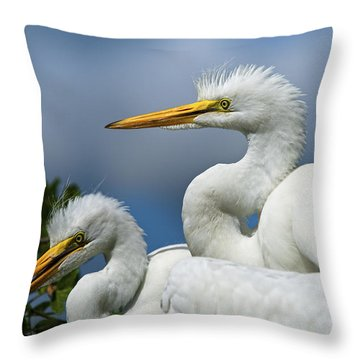 Anxiously Waiting Throw Pillow by Christopher Holmes