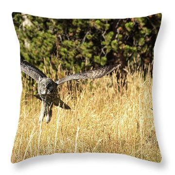 Anything Better Throw Pillow