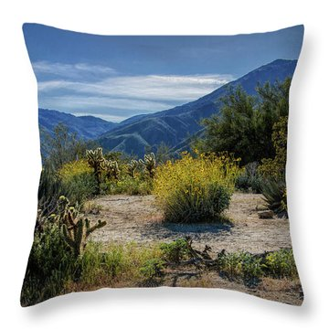 Throw Pillow featuring the photograph Anza-borrego Desert State Park Desert Flowers by Randall Nyhof