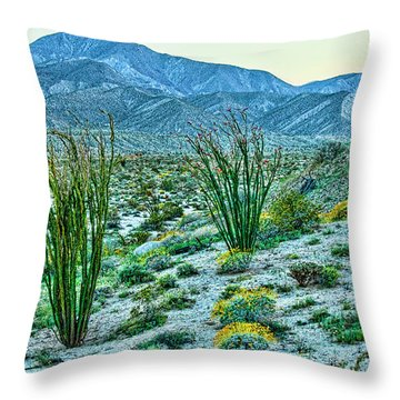 Anza Borrego Twillight Throw Pillow