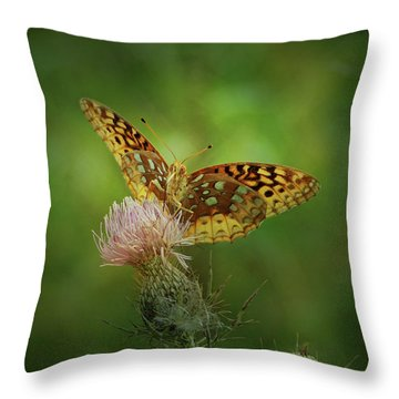 Aphrodite Fritillary Butterfly Throw Pillow
