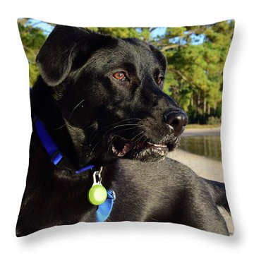 Apollo On The Beach Throw Pillow