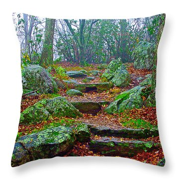 Appalachain Trail In The Clouds Throw Pillow