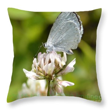 Throw Pillow featuring the photograph Appalachian Azure by Randy Bodkins