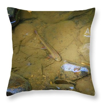 Appalachian  Native Throw Pillow