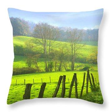 Appalachian Spring Morning Throw Pillow by Francesa Miller