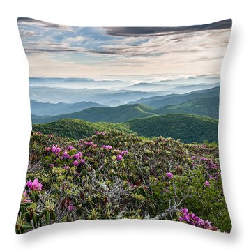 Appalachian Trail Roan Highlands Catawba Rhododendron Throw Pillow