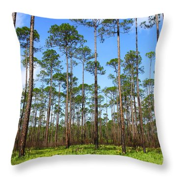 Appalachicola National Forest Throw Pillow
