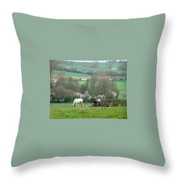 Appaloosa In May Throw Pillow