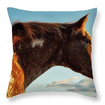 Appaloosa Mare Throw Pillow