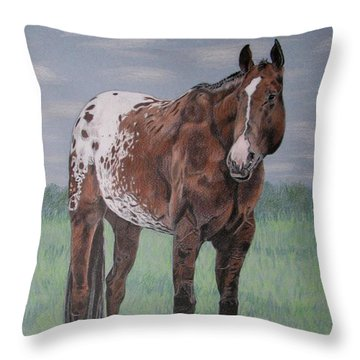 Appaloosa Throw Pillow by Melita Safran