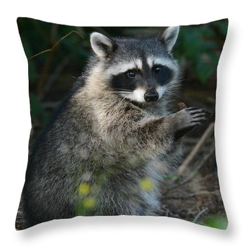 Applause Throw Pillow